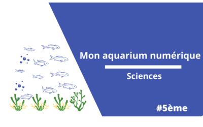 Mon aquarium numérique : sciences 5è