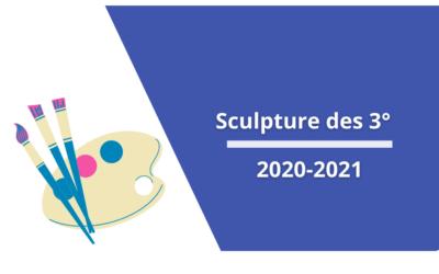 Sculpture des 3° _ 2020-2021